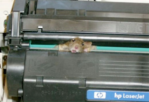 mouse-stuck-printer